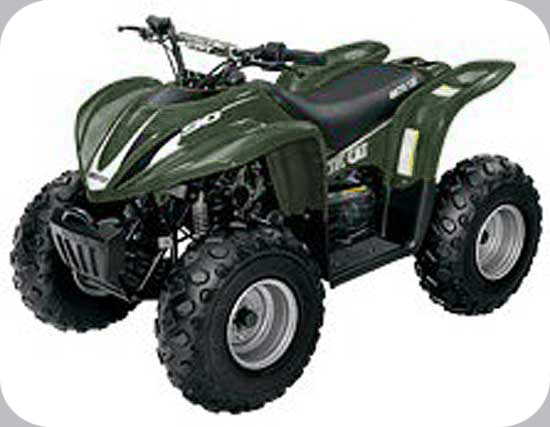 arctic cat model