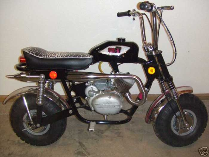 1970    Arctic       Cat       Panther