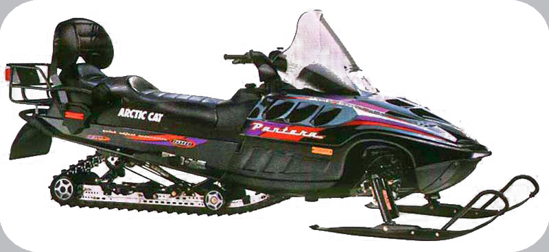 Arctic Cat Panther